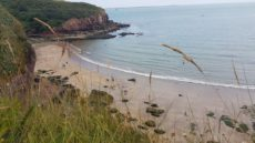 dunmore east holiday park camping site