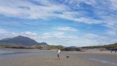 beach at Connemara camping